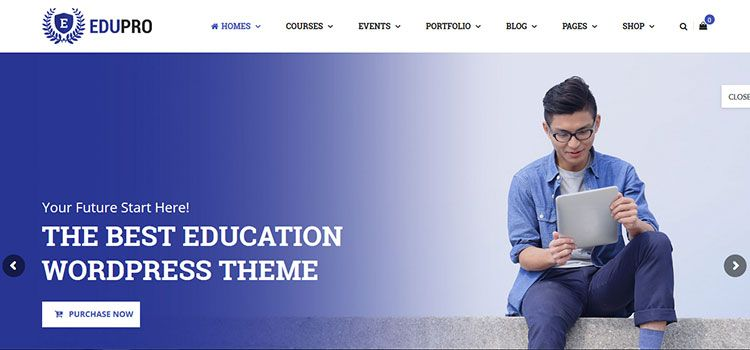 themes LMS wordpress educacion