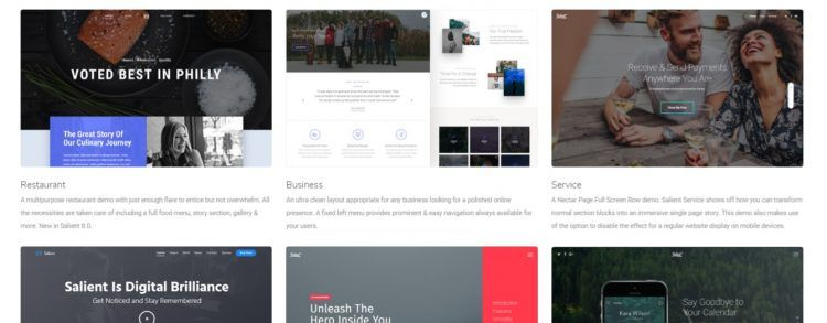 descargar salient wordpress theme